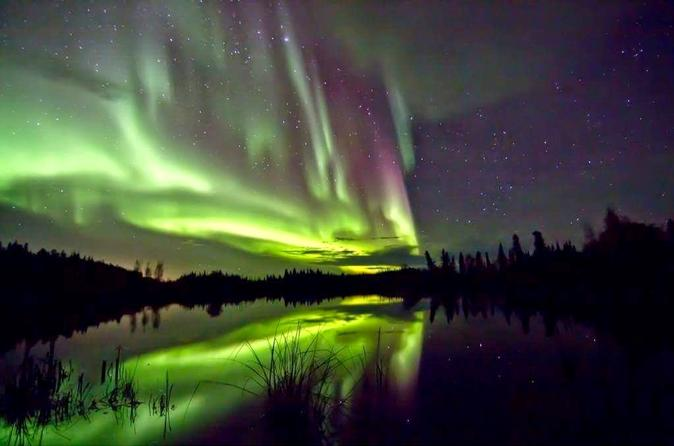 northern-lights-tour-from-yellowknife-in-yellowknife-199760